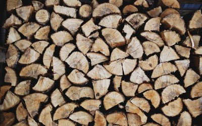 Logs and the Specks – Priorities