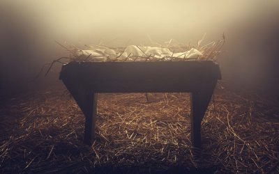 Called to the Manger, Again